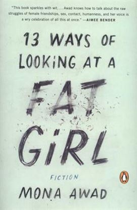 Imagen de 13 WAYS OF LOOKING AT A FAT GIRL