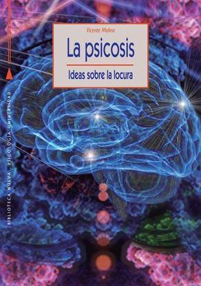 Imagen de LA PSICOSIS