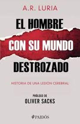 Imagen de EL HOMBRE CON SU MUNDO DESTROZADO