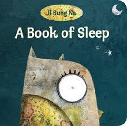 Imagen de A BOOK OF SLEEP