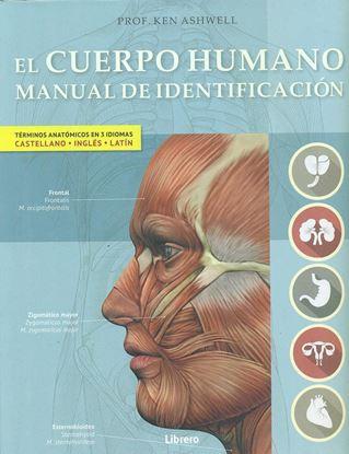 Imagen de EL CUERPO HUMANO