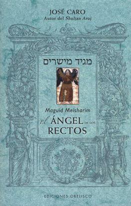 Imagen de EL ANGEL DE LOS RECTOS
