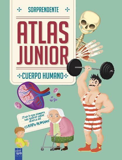 Imagen de ATLAS JUNIOR. CUERPO HUMANO
