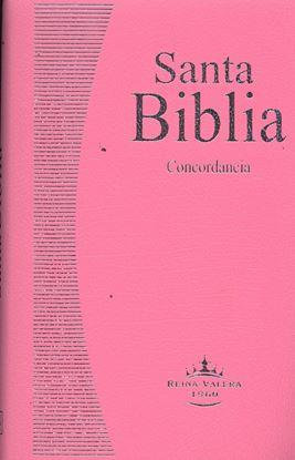 Imagen de BIBLIA REINA VALERA ROSA RS
