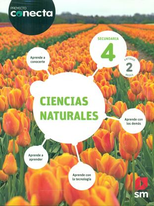 Imagen de CIENCIAS NATURALES 4 CONECTA (SECUNDARIA