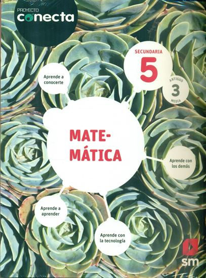Imagen de MATEMATICA 5 CONECTA (SECUNDARIA)