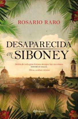 Imagen de DESAPARECIDA EN SIBONEY