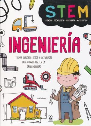 Imagen de INGENIERIA. TEMAS CURIOSOS, RETOS Y ACT.