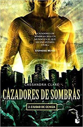 Imagen de CAZADORES DE SOMBRAS 2. CENIZA (BOL)